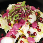 Fennel and Endive Salad with Pomegranates and Pistachios