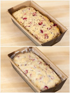Cranberry Eggnog Cakes | by Spache the Spatula (www.spachethespatula.com)
