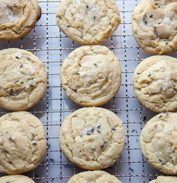 Honey lavender cookie recipe