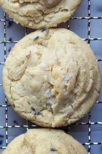 Salted White Chocolate Lavender Cookies | spachethespatula.com #recipe