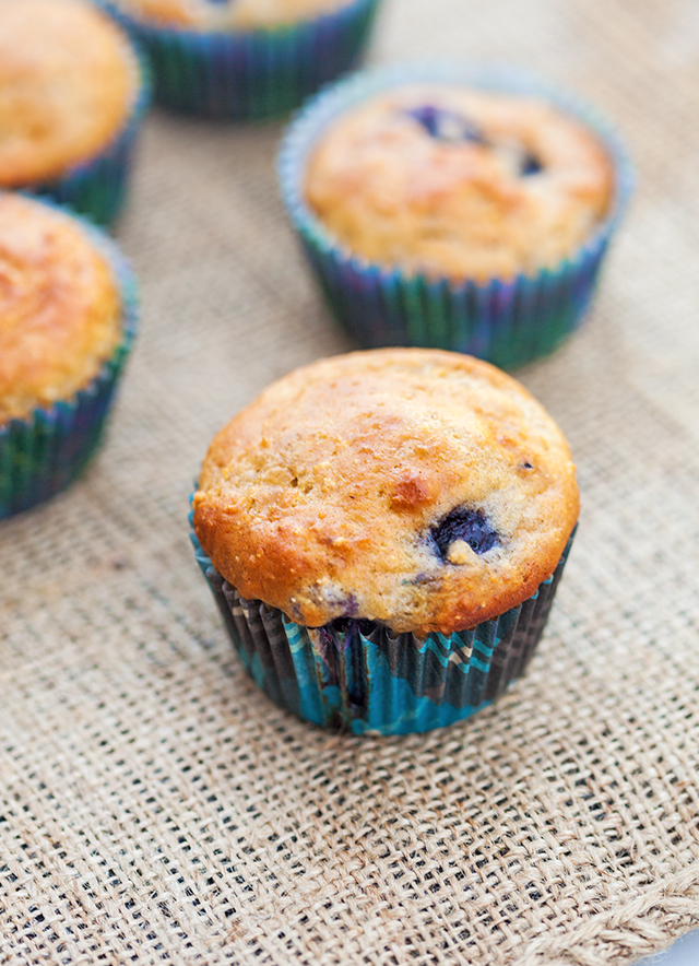 You choose---Whole grain and refined sugar-free? or a more standard AP flour and sugar version! Both contain tons of blueberries and are less than 100 calories each!   spachethespatula.com #recipe